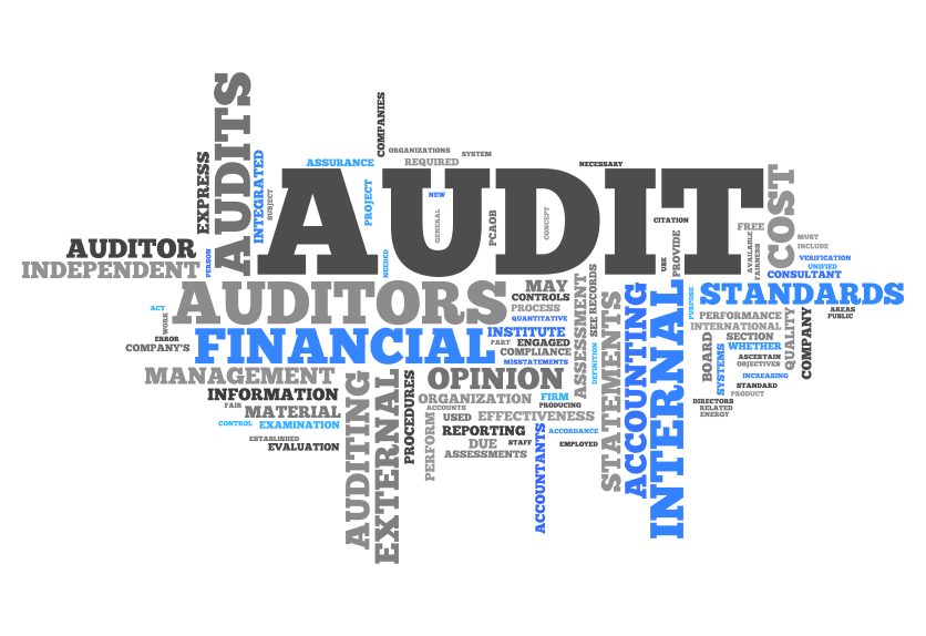 What does ERP Audit system do